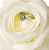 Rose and engagement ring — Stock Photo