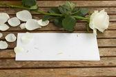 Pusty list z różą — Zdjęcie stockowe