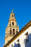 колокольня собора, кордова, испания — Стоковое фото