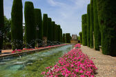 Gardens at the Alcazar in Cordoba, Spain — Stock Photo