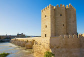 Wieża calahorra, Kordoba, Hiszpania — Zdjęcie stockowe