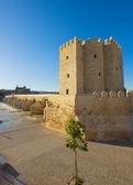 Torre calahorra, cordoba, i̇spanya — Stok fotoğraf