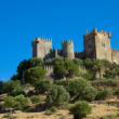 Almodovar del Rio, Cordoba, Spain - Stock Photo