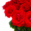 Stock Photo: Bouquet of blooming red roses