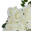 Bouquet of white fresh roses — Stock Photo