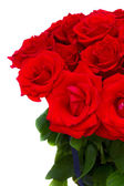 Bouquet of blooming red roses — Stock Photo