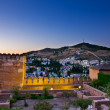 Stock Photo: Alhambrand Granadat night, Spain