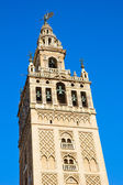 Bell tower of Cathedral church, Seville, Spain — Stock Photo