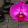 Zen stones and orchid — Stock Photo #12270566