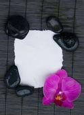 Página en blanco con ajuste de spa — Foto de Stock