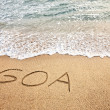 Stock Photo: Goa on the sand