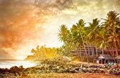 Ocean tropical view — Stock Photo