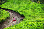Yoga warrior pose in tea plantations — Stock Photo