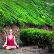 Meditation in tea plantations - Stock Photo