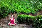 Meditation in tea plantations — Stock Photo