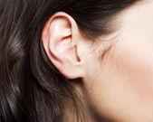 Woman's ear — Stock Photo