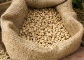 Feed in sacks fodder — Stock Photo