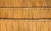 Thatched çatı saman — Stok fotoğraf