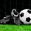 Soccer ball and cleats — Stock Photo #10801911