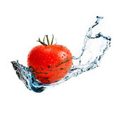 Red ripe tomato with water splash — Stock Photo