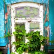 Stock Photo: Window of an old house