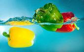 Peperoni colorati — Foto Stock