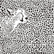 Stock Vector: Pattern cheetahs background