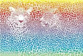 Leopard rainbow pattern background — Stock Vector