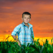 Happy young man rest on green field — Stock Photo #11623400
