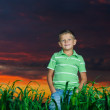 Happy young man rest on green field — Stock Photo #11623522
