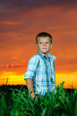 Happy young man rest on green field — Stock fotografie