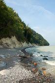 Limestone coast — Stock Photo