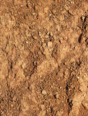 Dry agricultural brown soil — Foto de Stock