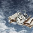 Stock Photo: Time flies history concept