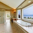 Large bath tun with water view and luxury bathroom interior. — Stock Photo #10919781