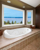Brown bathroom with new tub and water view. — Stock Photo