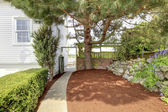 Side yard with walk way and large tree near white house. — Stok fotoğraf