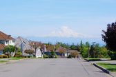 Large houses on the street with water view with Mt.Ranier. — Stock Photo