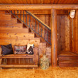 Rustic log cabin stairace and bench details. — Stock Photo #11404779