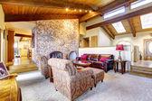 Soggiorno con soffitto in legno con camino in mattoni. — Foto Stock