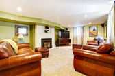 Tv room with green walls, leather sofas and fireplace. — Foto Stock