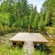Royalty-Free Stock Photo: Pond in the forest with small pier.