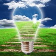 Light bulb with blue sky and grass field - Foto Stock