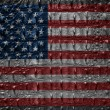 Vintage USA flag with crocodile texture - Stock Photo