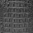 Crocodile skin texture background. - 图库照片