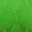 Vintage green crocodile belly skin texture. — Stock Photo