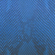 Blue python snake skin texture background — Stock Photo