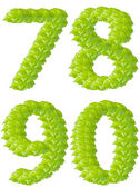 Green leaf numbers 7 8 9 0 alphabet character. — Stock Photo