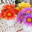 Colorful flower in the coffee shop. — Stock Photo