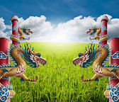 Four Dragon statue with the blue sky field. — Foto Stock